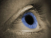 Blue human eye — Stock Photo