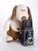 Plushy photographer — Stock Photo