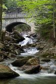 White creek — Stock Photo