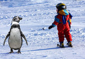 Child skiing with penguin — Stock Photo