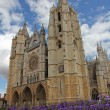 Cathedral of Leon, Spain, Europe — Stock Photo #13539685
