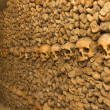 Stock Photo: Catacomb