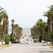 Постер, плакат: Rue Dag Hammarskjoeld Carthage Hannibal Tunis Tunisia road to se