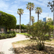 Gardens walkway in waterfront Oasis Park El Kantaoui Sousse Tuni — Stock Photo #12633482
