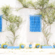 Typical white Tunisian architecture Tunisia Africa Sidi Bou Said — Stock Photo #12633500