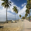Stock Photo: Boulevard santo domingo