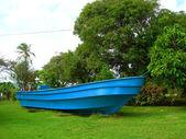 Maïs natif de grand bateau island nicaragua — Photo