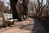 New york city park — Stock Photo
