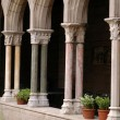 Cloisters — Stock Photo #12911911