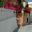 Stock Photo: Greek island street scene