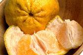Citrus — Stock Photo