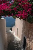 Street scene greek islands — Stock Photo