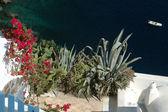 Si affacciano sulla pittoresca isola greca — Foto Stock