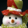 Snow man — Foto Stock