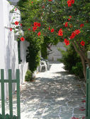 Greek island scene — Stock Photo