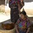 Guatemala indian women vendors — Stock Photo