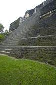 Temple IV the lost world tikal guatemala — Stock Photo