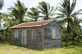 Maison natale de maïs peu île — Photo