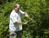 Man trimminf bush with shears at suburban house — Stock Photo