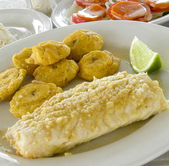 Fresh fish fillet with tostones Corn Island Nicarauga — Stock Photo