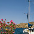 Yacht with flowers harbor Ios Greek islands — Stock Photo
