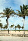 Pedestrian promenade south beach miami florida — Stock Photo