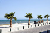 "Seaside Avenue ""Foinikoudes"", Larnaca Cyprus promenade — Stock Photo"