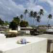Stockfoto: Cemetery by sea
