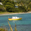 Colorful fishing boat bequia st. vincent and the grenadines — Stock Photo #13397366