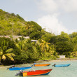 Fishing boats friendship bay la pompe bequia st. vincent and the — Stock Photo