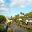 Typical street scene bequia native house on road with coconut tree — Stock Photo