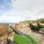 Постер, плакат: Cannons Fort Oranje Oranjestad Sint Eustatius island Caribbean Netherlands