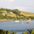 Friendship Bay fishing boats Bequia St. Vincent — Photo