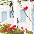 Greek island Paros typical architecture of white motel apartment building — Stock Photo