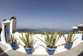 Porto di isola vista fisheye — Foto Stock