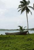 Boot caribische zee vissen — Stockfoto