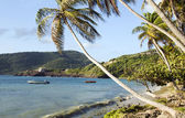 Crescent beach in industry bequia st. vincent and the grendadine — Stock Photo