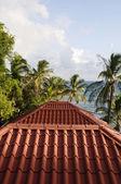 Detal dachu konstrukcji kukurydzy wyspa nikaragui — Zdjęcie stockowe