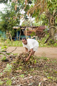 Native man nicaraguayenne collecte brosse pour feu corn island nicaragua — Photo