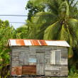 Ramshackle zinc clapboard house jungle Corn Island Nicaragua — Stock Photo #13400188