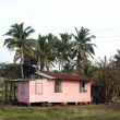 Typical house corn island nicaragua — Stock Photo #13400587