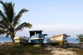 Three fishing boats on shore caribbean sea — Stock Photo