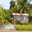 Garbage burning jungle clapboard house Corn Island Nicaragua — Stock Photo #13413161