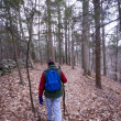 Man hiking in woods — Stock Photo #13413983