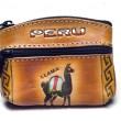 Hand made change purse peru — Stock Photo #13419309