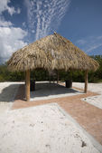 Tiki hut halm tak coco plommon beach florida keys — Stockfoto
