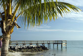 Pier over atlantic ocean florida keys — Stock Photo