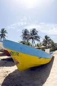 Fishing boat with coconut trees Waula Point Corn Island Nicaragua — Stock Photo