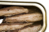 Sardines skinless boneless — Stock Photo