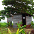 Typical house corn island nicaragua - Stock Photo